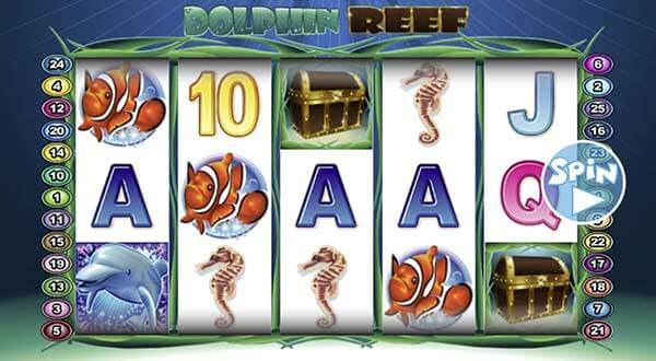 Overview-Dolphin-Reef-1